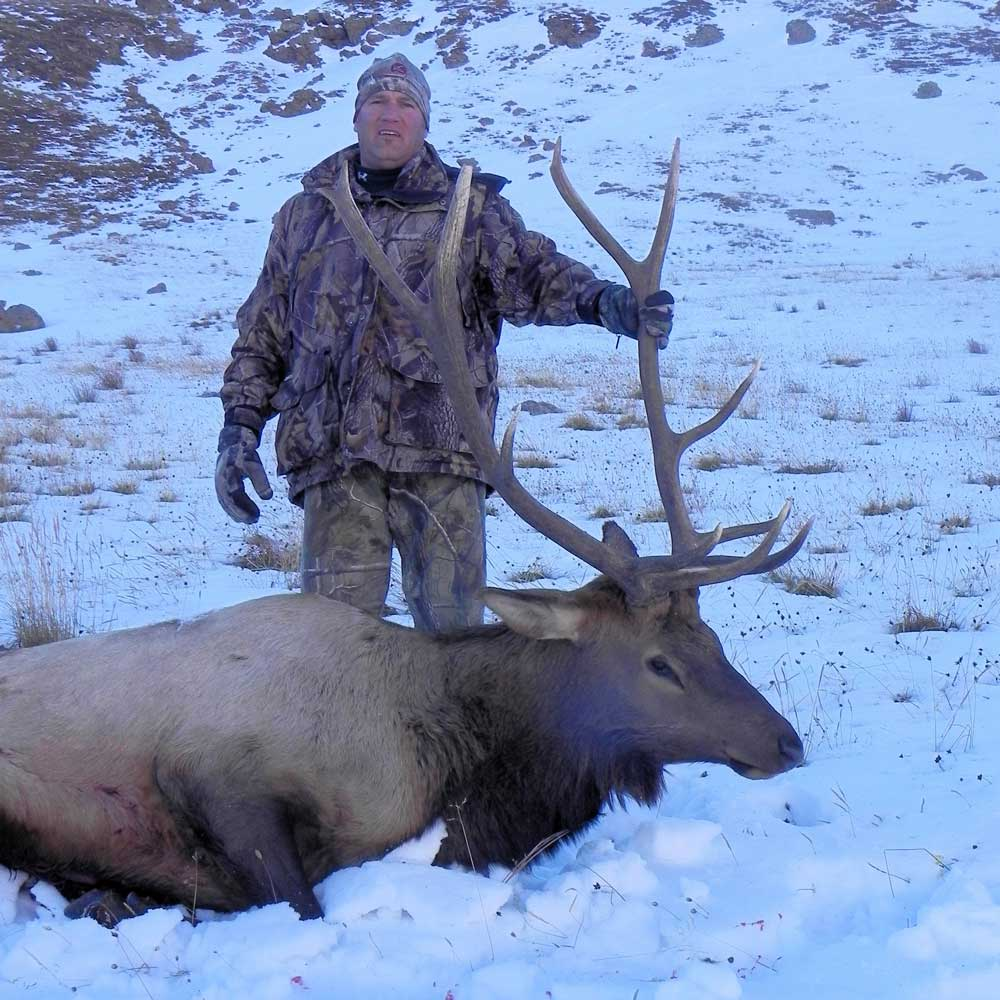 hunting for elk in colorado with a rifle