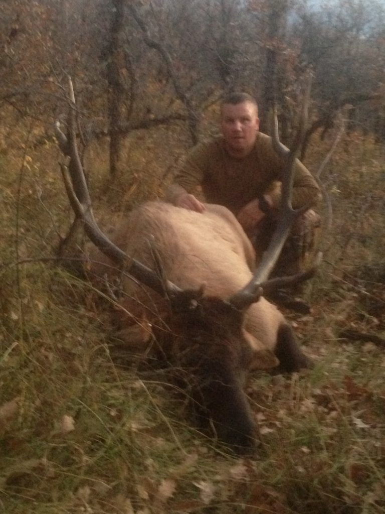 hunting for elk in colorado