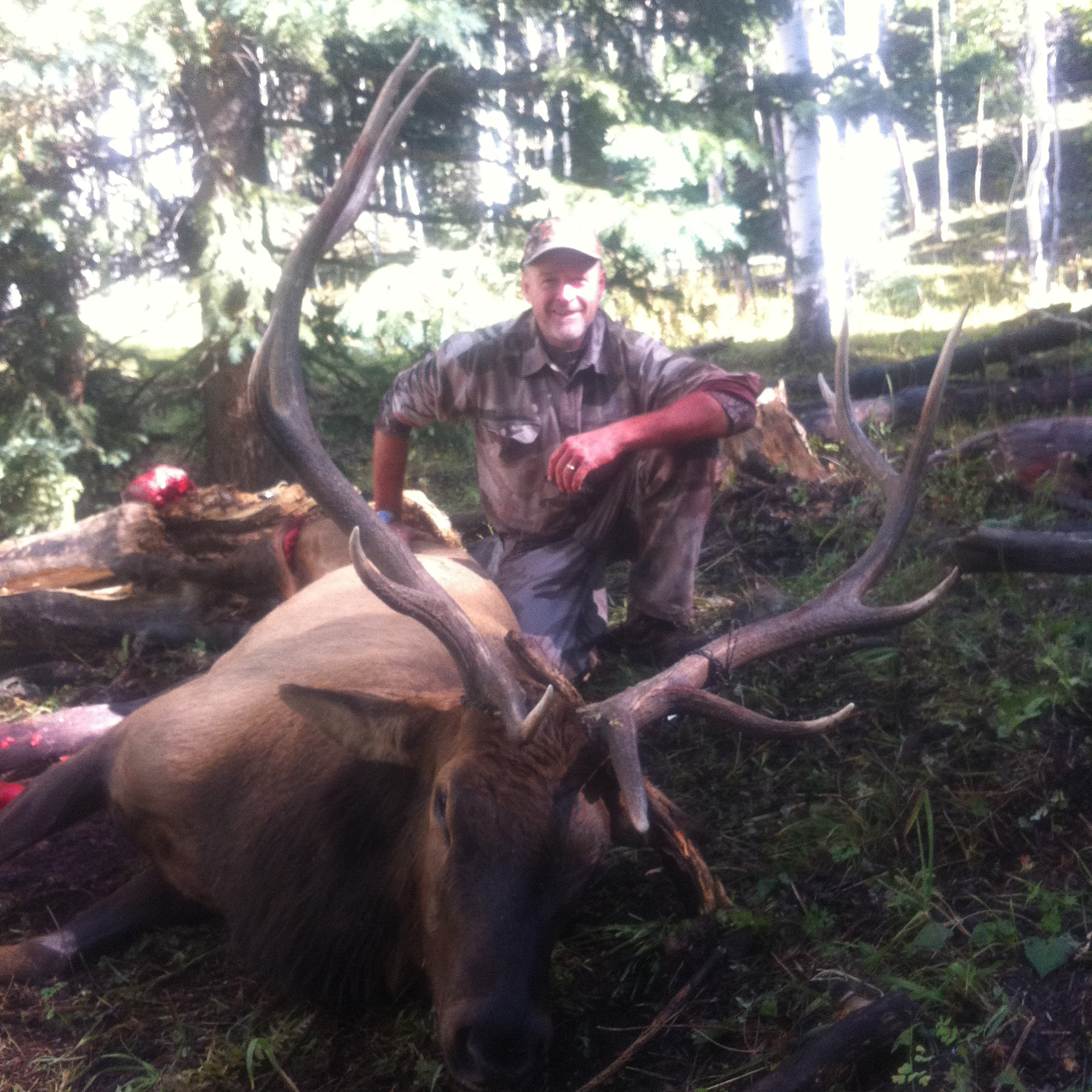 Action Adventures - Colorado Elk & Mule Deer Hunting Outfitter