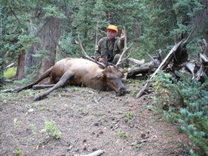 Muzzleloader Elk Hunting