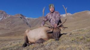 Wilderness Rifle Bull