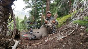 Timberline mule deer hunting