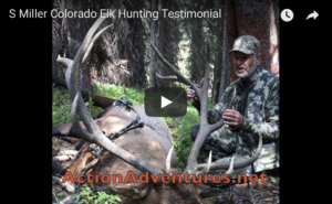 successful archery Colorado elk hunting